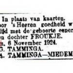Geboorte advertentie van Froukje Tamminga N271.